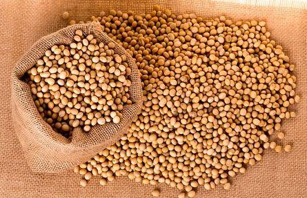 Een greep naar sojabonen